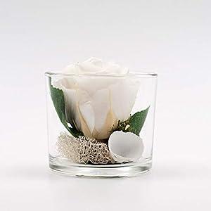 Kleines Tischgesteck mit weißer Rose (preserved)+Muscheln im Glas-Tischdeko mit getrockneter Blume