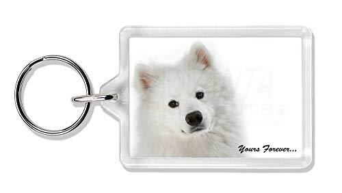 Advanta - Keyrings Samojede Hund ' Yours Forever' Foto Schlüsselbund TierstrumpffüllerGeschenk -