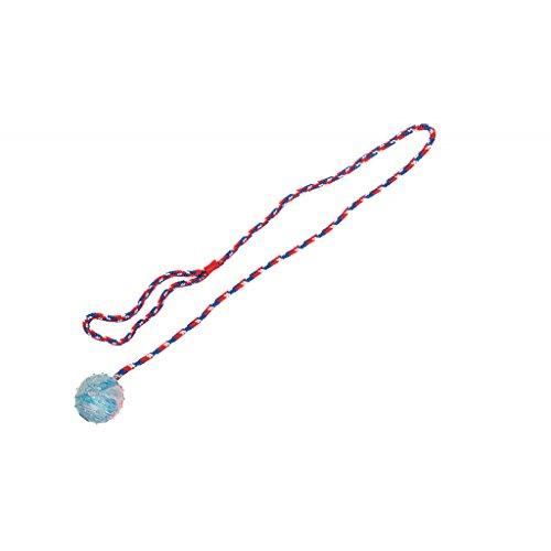 hundeinfo24.de Hundespielzeug: SCHLEUDERBALL aus Gummi Ø 5,5 x 57cm #507424
