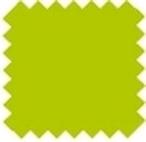 Multicolore 30,5 x 30,5 x 0,7 cm Vaessen creative 2923-002 Papier Scrapbook Florence 216/g 12x12 inches-Multipack de 24 Feuilles Vert
