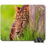 Preisvergleich Produktbild AMBUSH Mouse Pad, Mousepad (Cats Mouse Pad)