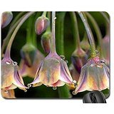 draping-flowers-mouse-pad-mousepad-flowers-mouse-pad