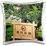 signs-sign-chateau-changyu-castel-yantai-shandong-china-16x16-inch-pillow-case
