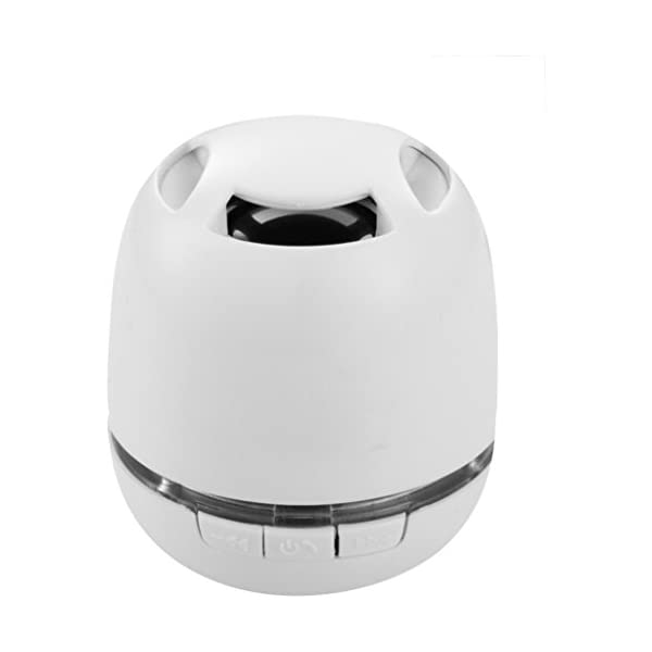 Avenue - Commander - Casse portatili Bluetooth 2 spesavip