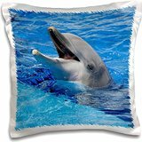 Kike Calvo Dolphins - Dolphin with its mouth open at Oceanographic Aquarium in Valencia, Spain - 16x16 inch Pillow Case
