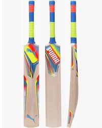 Puma-evoSpeed-2500-English-Willow-Cricket-Bat