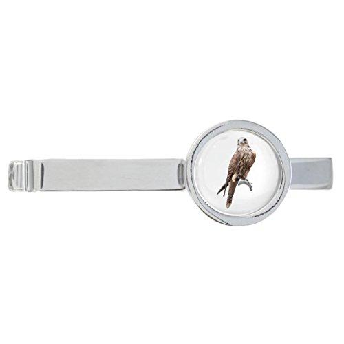 1StopShops Krawattenklammer mit Falken-Motiv, rhodiniert, in Geschenkbox, Braun (Tie Vogel Clip)