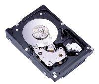 B400-speicher (Enterprise MAW3300NC - Festplatte - 300 GB)