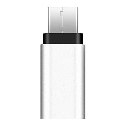 BULAGE 8 Pin Lightning Buchse auf Typ C Stecker Adapter Konverter für Samsung S10 Mate 20/10 Android Smartphone (220v-c-typ-konverter)