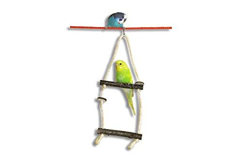 vogelgaleria-double-balancelle-en-bois-pour-cage-a-oiseau