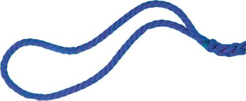 Champion Sports Tauchseil, Blue, 100 Feet, 100-Feet 1-Inch Diam (Champion Sport Seil)
