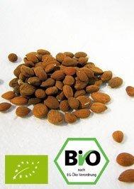 Bio Aprikosenkerne bitter Qualität