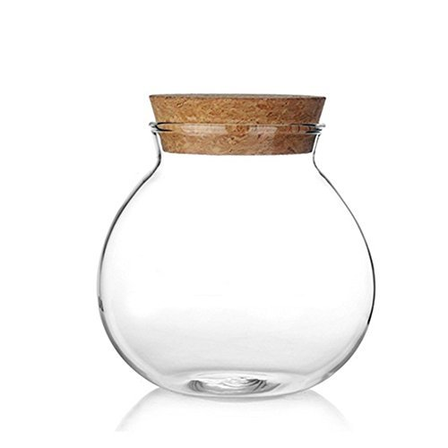 Milopon Airtight Canister Luftdichter Kanister Clear Glass with Holz Lid Storage Jar for Candy Tea Cookie Nuts Cereal 570ml