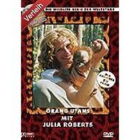 Stars in der Wildnis: Orang Utans mit Julia Roberts