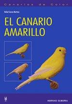 El canario amarillo (Canarios de color) por Rafael Cuevas Martínez