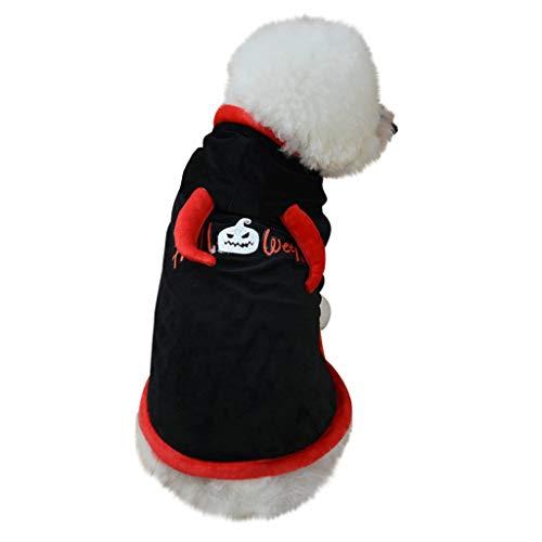 Balock Schuhe Haustier Mantel - Haustier Halloween Vampir Kostüm - Haustier Fledermaus Flügel Vampir Mantel Zauberer Hut für Halloween Party, Haustier Cosplay - für Mini Dackel/Yorkie (XL) (Einfach Dackel Kostüm)