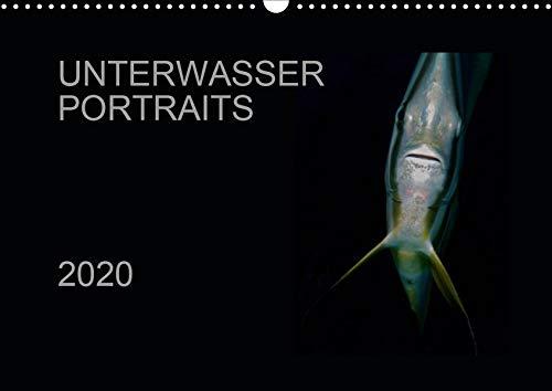 Unterwasser Portraits (Wandkalender 2020 DIN A3 quer): Unterwasserwelt in Detailaufnahmen (Monatskalender, 14 Seiten ) (CALVENDO Tiere)