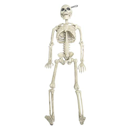 JohnJohnsen Horrible Halloween Skeleton Model Kleine Größe Beweglicher Schädel Skeleton Halloween Hängende Requisiten Party Scary Dekoration (beige weiß) (Bewegliche Requisiten Halloween)