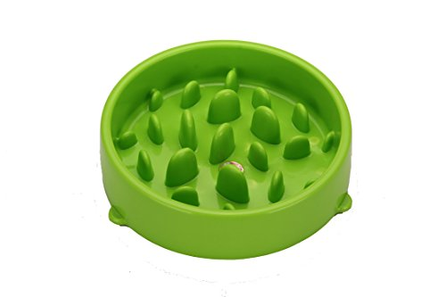 Hubulk-Slow-Feed-Dog-Bowl-Interactive-Bloat-Stop-Pet-Feed-Bowl-Slow-Down-Eating-Green