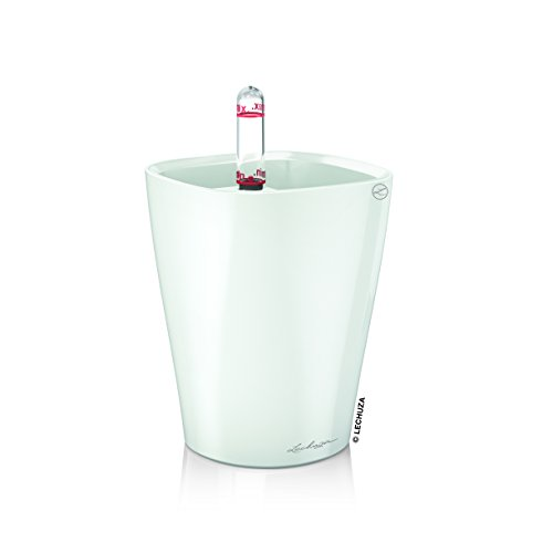 Lechuza Premiuim Mini Deltini 13cm Tall, High Gloss White Self Watering  Houseplant & Herb Indoor Planter Pot