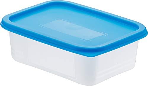 AmazonBasics - Set mit 4 Gefrierbehältern - 4 x 0,5 l 0.5 Liter Container