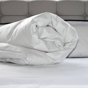 Single Anti Allergy Anti Bacterial Washable Duvet Quilt Protector (Duvet Protector Anti Allergy, Single)