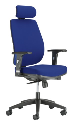 chairs-for-offices-134002bl-executive-ergonomic-reclining-office-chair-headrest-and-lumbar-support-b