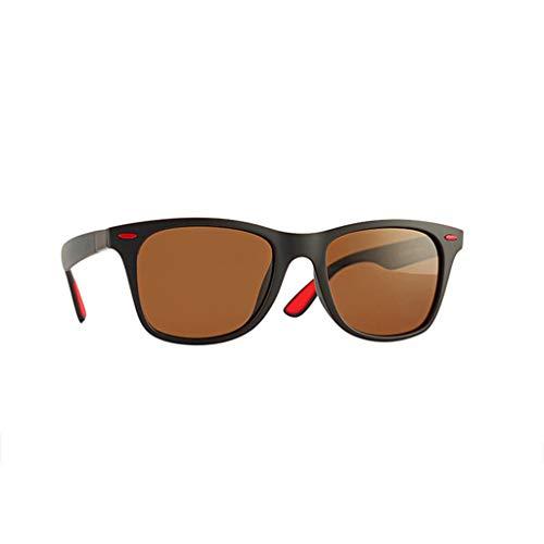 Trisee ✔ Sonnenbrille, Klassisch Polarisierte Sonnenbrille Freien Reitbrille Sport Sonnenbrille Nachtsichtbrille Damen Sonnenbrille Herren Sonnenbrille Blaulichtfilter Brille - UV-Schutz