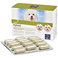 Camon – Hybrid-Ergänzungsfuttermittel zur Wiederherstellung des richtigen pH-Werts der Tränen- und Speicheldrüsen bei Hunden und Katzen