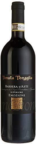 Tenuta-Tenaglia-Emozioni-Barbera-dAsti-DOC-2008-trocken-1-x-075-l
