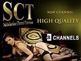 Penthouse HD Karte SCT Paket 8 Sender 12 Monate Viaccess Hotbird Neu