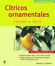 citricos-ornamentales-jardin-en-casa