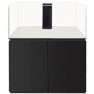 All Pond Solutions 460L Ultra Clear Glass Marine Aquarium Fish Tank, Sump & Black Cabinet – 120cm Basic 31zqt3HXWiL