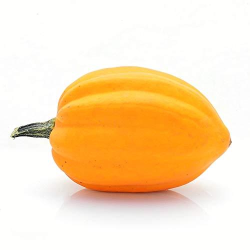 Kürbisplanet Eichelkürbis orange (Acorn Squash - Table Gold) ca. 0,4 bis 1,0 Kg - ca. 10 bis 20 cm lang - Dekokürbis - Esskürbis