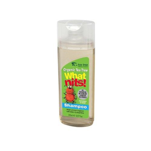what-nits-tea-tree-shampoo-250ml