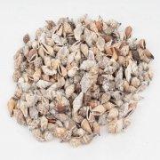 Muschel Mini Mix braun 2-3cm 1kg von deko-ideen24de - Du und dein Garten