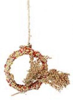 Kerbl Native Snacks Ring mit Rispenhirse, 3er Pack (3 x 90 g)