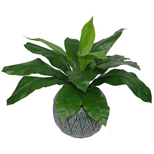 Leaf Foglia Artificiale Nido di Felce Artificiale Vaso in plastica, 50 cm, Colore Nero