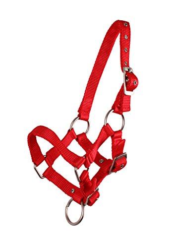 QHP Nylonhalfter Fohlen-Halfter 3fach Verstellbar Stark (Minishetty-Fohlen, Rot)