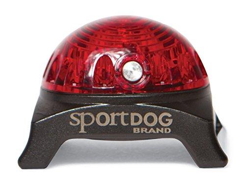 SportDOG Sicherheitsleuchte rot, Leuchtanhänger für Halsband, Ortungsleuchte für Hunde, bis zu 250 Stunden Laufzeit