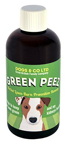 Green Peez dog urine grass patch repair neutralises burn marks on lawn 1