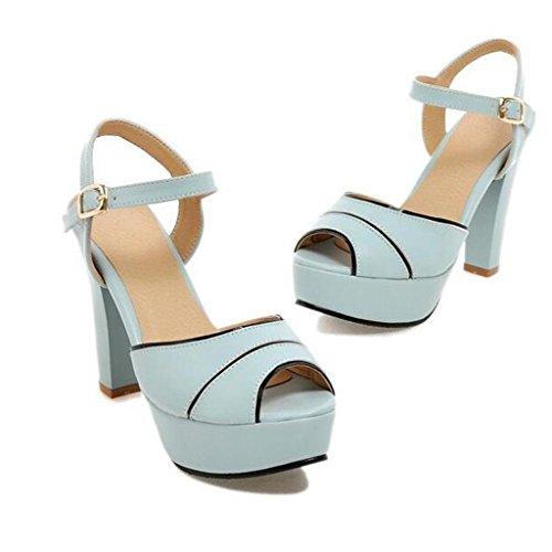 W&LM Signorina Tacchi alti sandali Greggio Bocca di pesce sandali Piattaforma impermeabile Bocca poco profonda sandali Blue