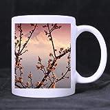 Kaffeebecher, japanische Kirschblüten und Mount Fuji, Keramik, 325 ml, Weiß