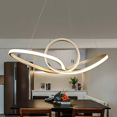 Elegent LED-Metallband-unregelmäßiger Kreis-Leuchter-weißes Gelbes Warmes Licht-Eisen-Aluminium-Acryl-Deckenleuchte, Das Lebende Studie Bezaubernd (Farbe : Weißes Licht) (Farbe Und Farbe Zone Kratzer)