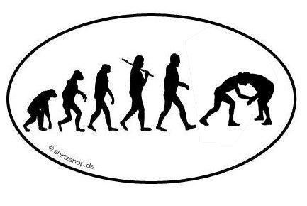 WRESTLING RINGEN RINGER KAMPFSPORT EVOLUTION serie 1.0 Aufkleber Autoaufkleber Sticker Vinylaufkleber Decal (1 Ringer)