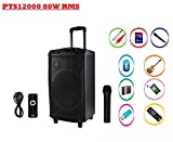 Punta 12000 W PMPO 12' Trolley Bluetooth Speaker Home Audio Speakers with Wireless Mic for karaoke and record function .Inbuilt USB,MMC & FM radio.Portable with wheels.rechargeable inbuilt battery 3-8 hours music playing