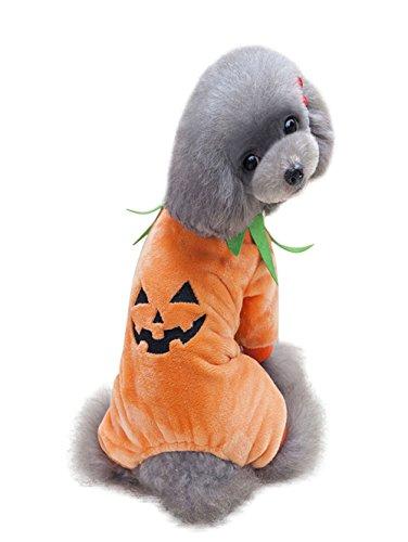 Moolecole Halloween Haustier Hund Katze Weihnachten Kostüm Hund Katze Kleidung
