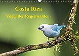 Costa Rica - Vögel des Regenwaldes (Wandkalender 2020 DIN A3 quer): Vögel des Regenwaldes Costa Ricas in ihrer ganzen Pracht (Monatskalender, 14 Seiten ) (CALVENDO Tiere) -