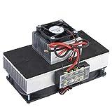Refrigeratore portatile a refrigerazione a semiconduttore 12V 100W Mini frigorifero/frigorifero condizionatore d'aria fai da te con ventilatore (tecnologia di refrigerazione a stato solido)