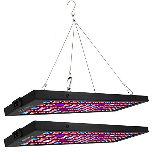 LED Pflanzenlampe 40W,Sunpion Zimmerpflanzen Wachstumslampe Vollspektrum LED Grow Lampe Pflanzenlicht